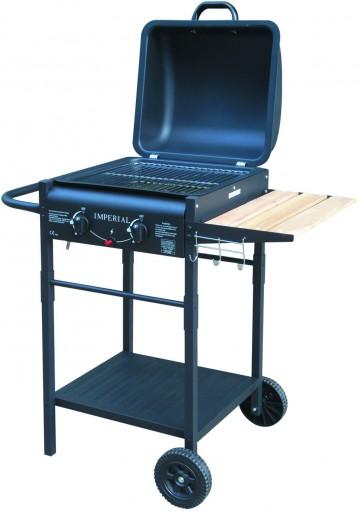 Barbecue pietra lavica ER 8203 N con due bruciatori