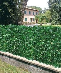 Arelle Sempreverdi Lauro 300x150 h siepe polipropilene