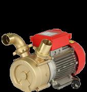 Pompa elettrica da travaso ROVER BE-M 50 per acqua vino olio latte gasolio - BISENSO in BRONZO