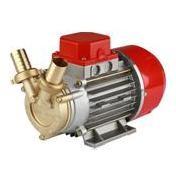 Pompa elettrica da travaso ROVER MARINA 20 a batteria 24 V - elettropompa