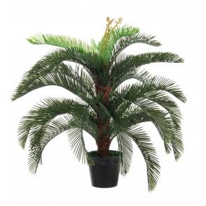 Bizzotto Pianta Palma Cycas a 30 Foglie Con Vaso Altezza 1m