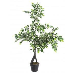 Bizzotto Pianta Ficus Variegato con Vaso X760F